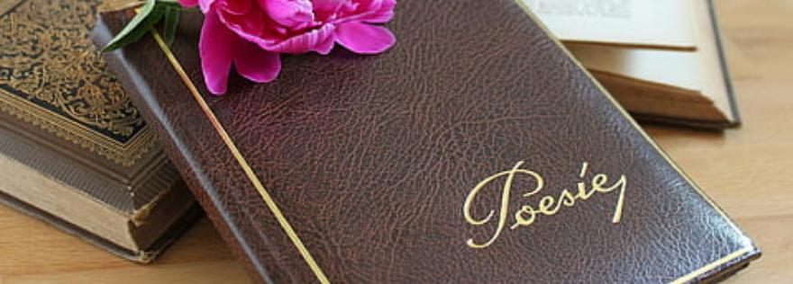 7-любопитни-факта-за-поезия-Самоиздател-платформа-за-създаване-на-книги